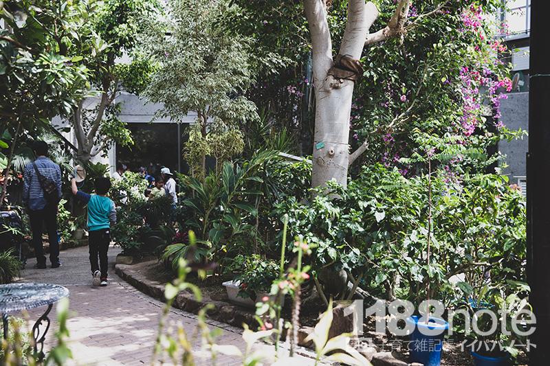 広島市森林公園 昆虫館 パピヨンドーム