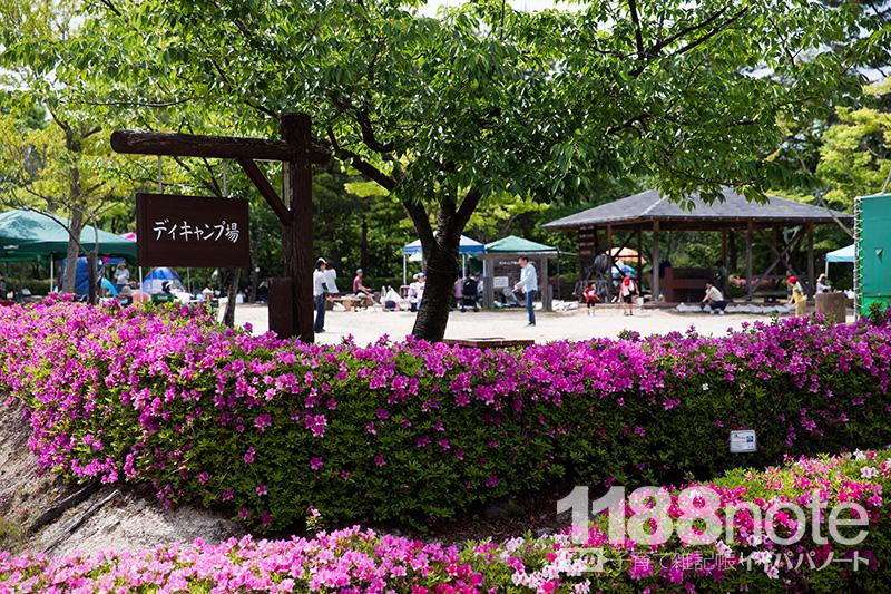 広島市森林公園のデイキャンプ場