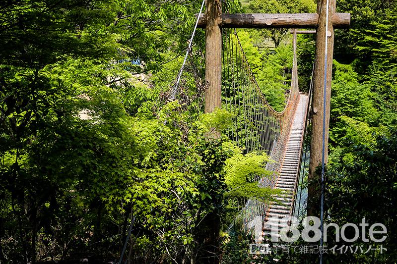 広島市森林公園のわんぱく橋