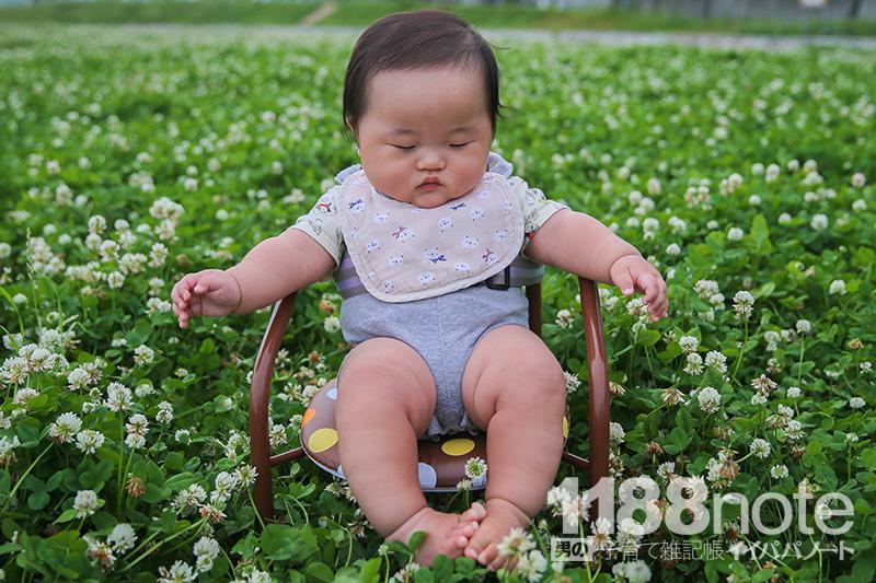 お花畑の赤ちゃん