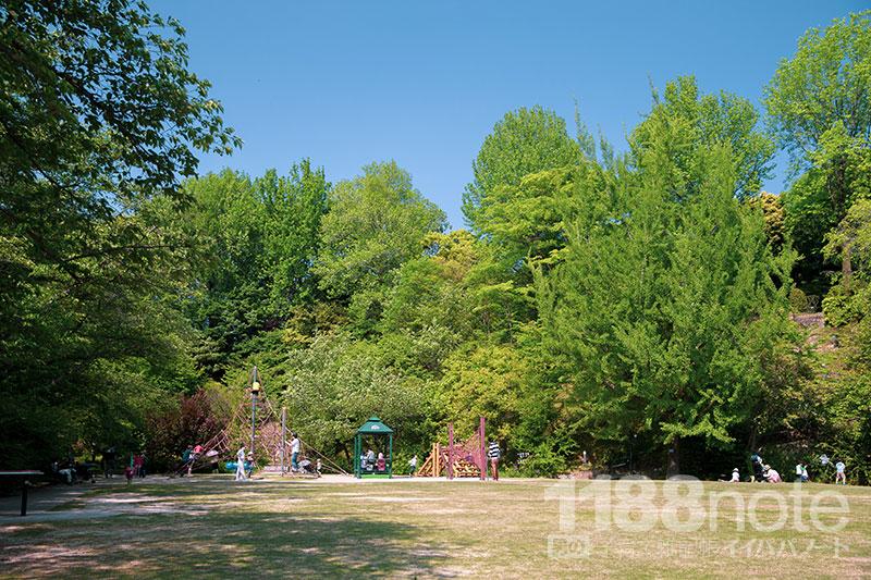 広島市植物公園の遊具