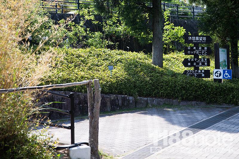 広島市植物公園のスロープ