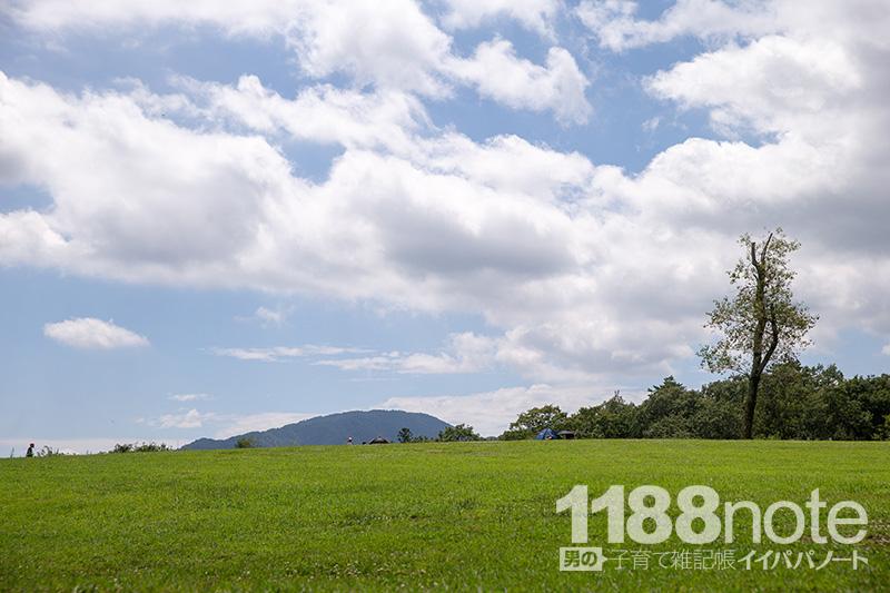 久保アグリファームの芝生の丘