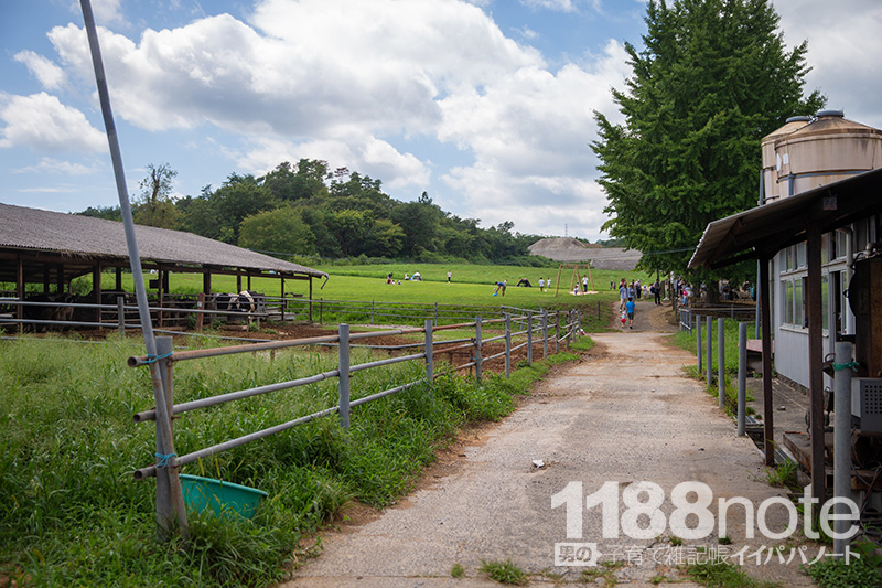 久保アグリファームの牛舎と丘