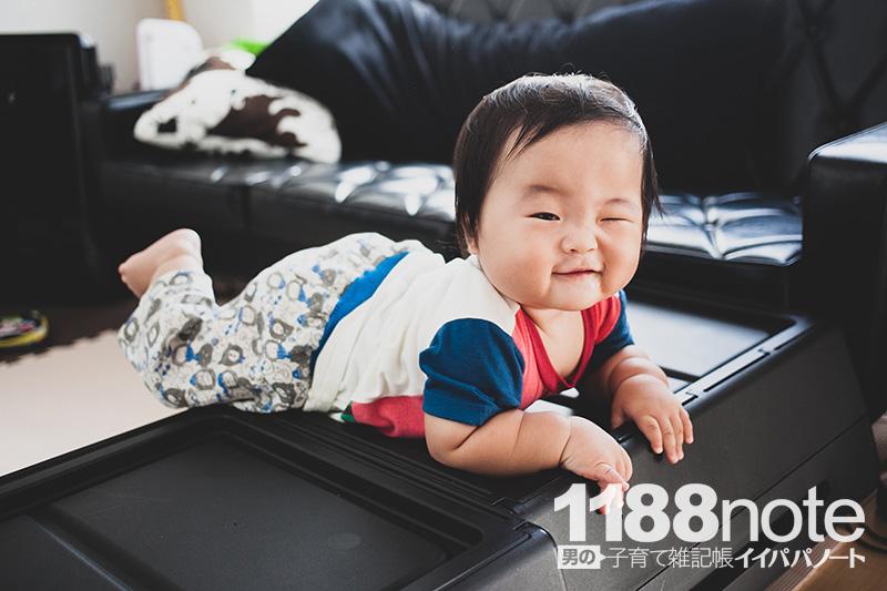 障害物を乗り越える赤ちゃん
