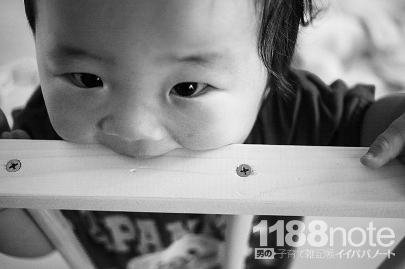 自作したベビーゲートを舐める赤ちゃん
