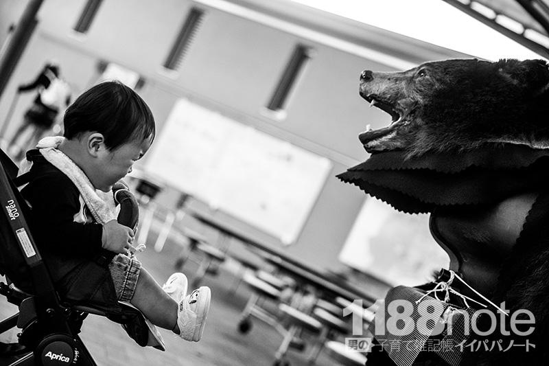 世羅夢公園の熊