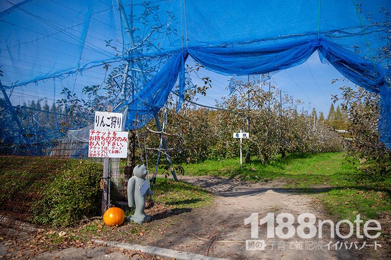 広島県三原市果実の森のリンゴ園