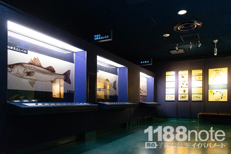 広島市水産振興センターのパネル展示