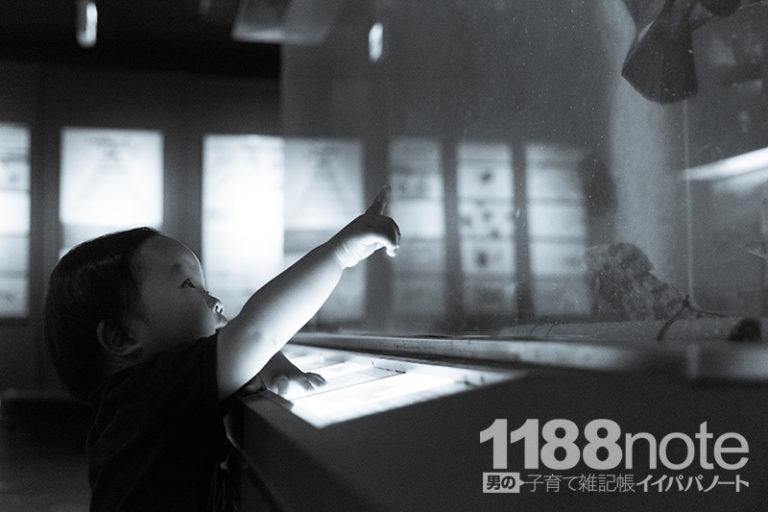 楽しく学べる無料のミニ水族館「広島市水産振興センター」