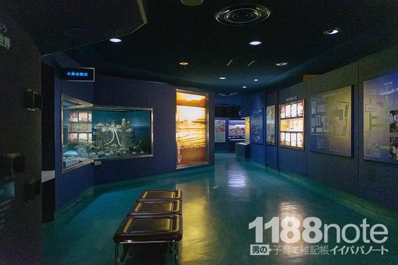 広島市水産振興センターの展示品